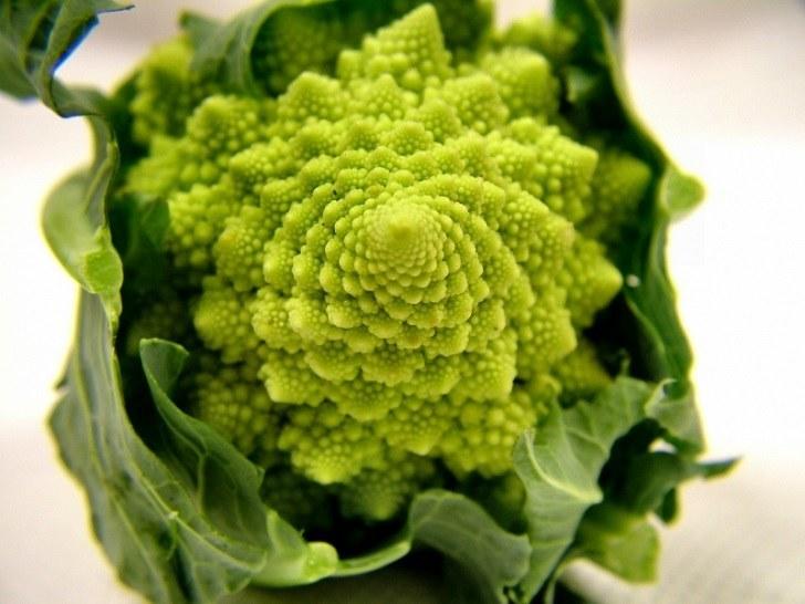 El brócoli romanesco
