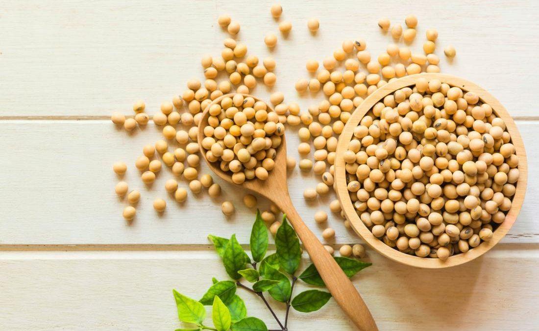 Alergia a la Soja: Causas, Síntomas y Tratamiento